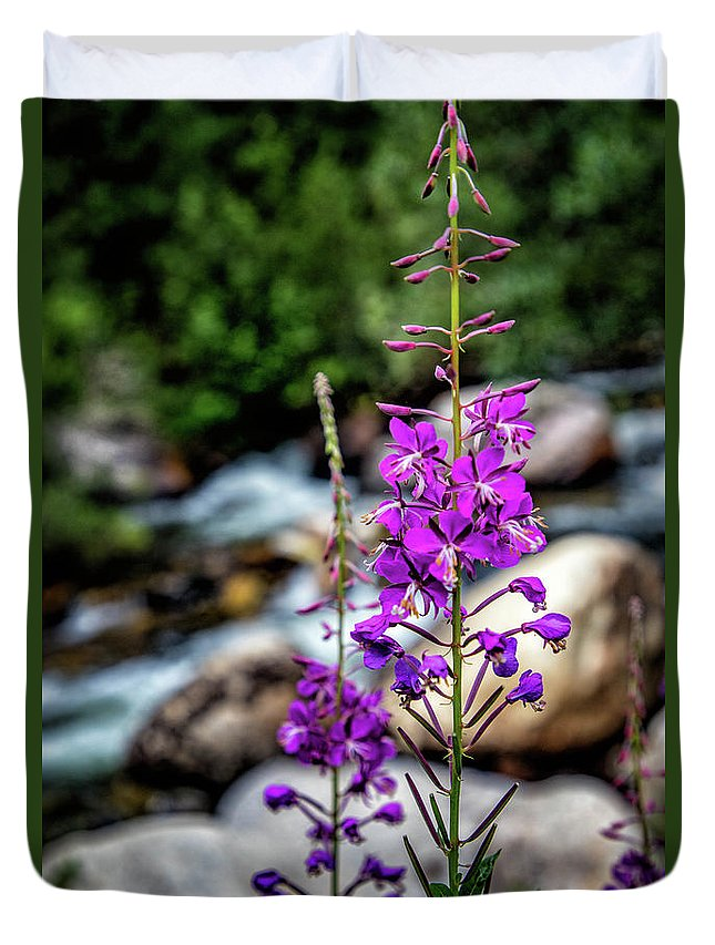 Duvet Cover featuring the photograph Delicate Purple by Erin Schwartzkopf
