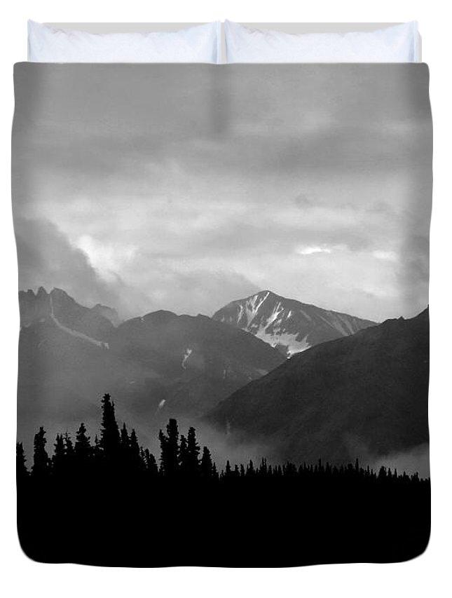 Alaska Duvet Cover featuring the photograph Denali National Park 1 by Dick Goodman