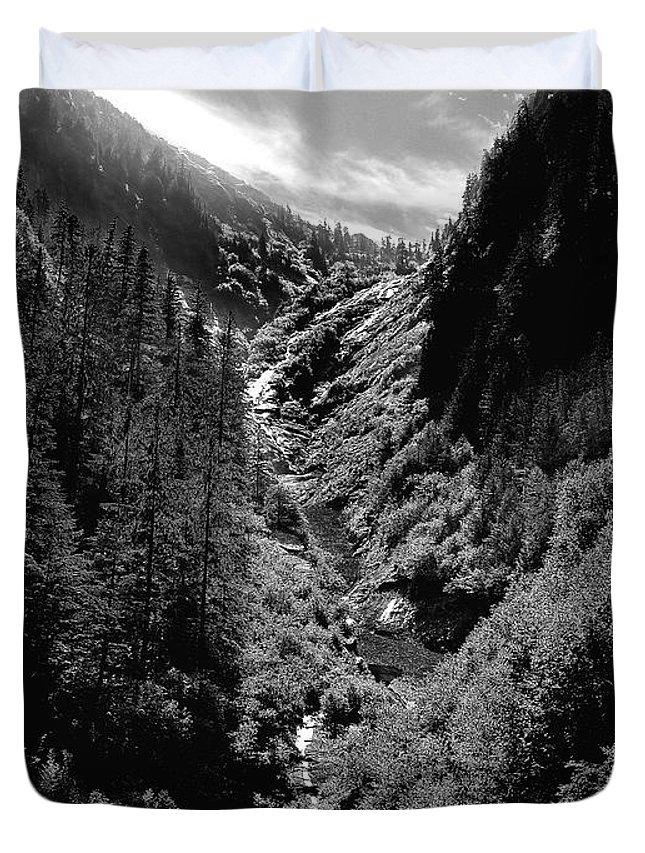 Alaska Duvet Cover featuring the photograph Denali National Park 3 by Dick Goodman
