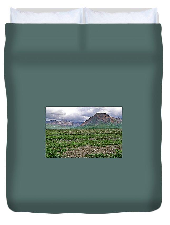 Denali Duvet Cover featuring the photograph Denali National Park Landscape 3 by Douglas Barnett