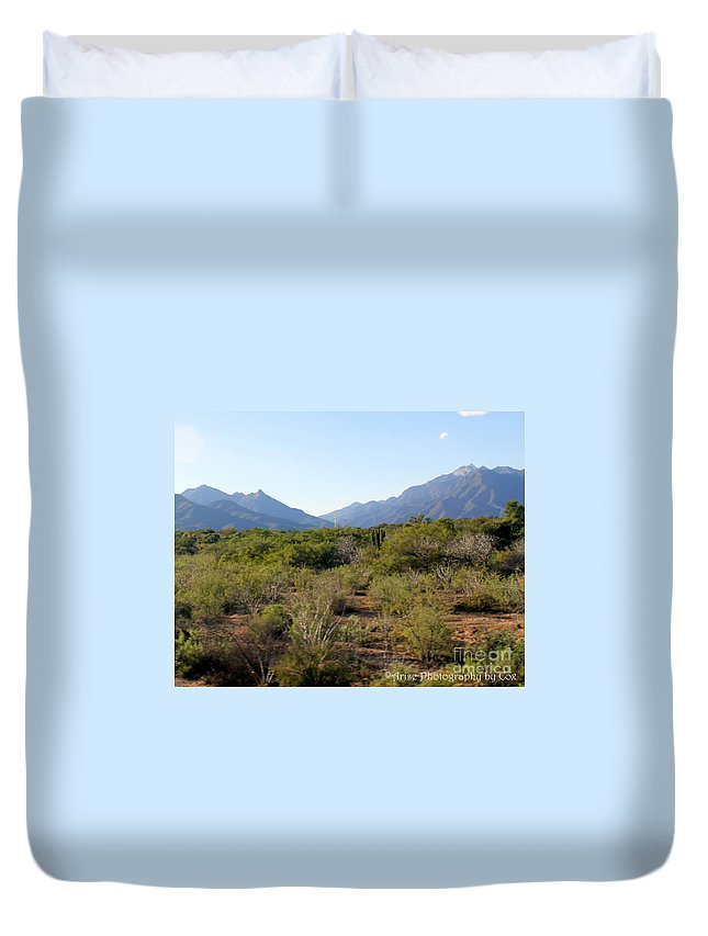 Desert Duvet Cover featuring the photograph Desert And Mountains In Mexico Cabo Pulmo by Charlene Cox