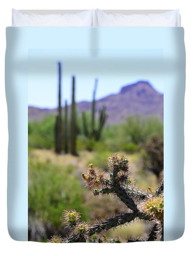Cactus Duvet Cover featuring the photograph Desert Cactus by Clyn Robinson