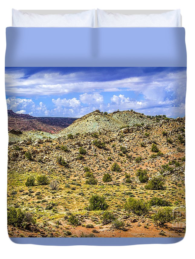 Arches Duvet Cover featuring the photograph Desert Colors by Roberta Bragan