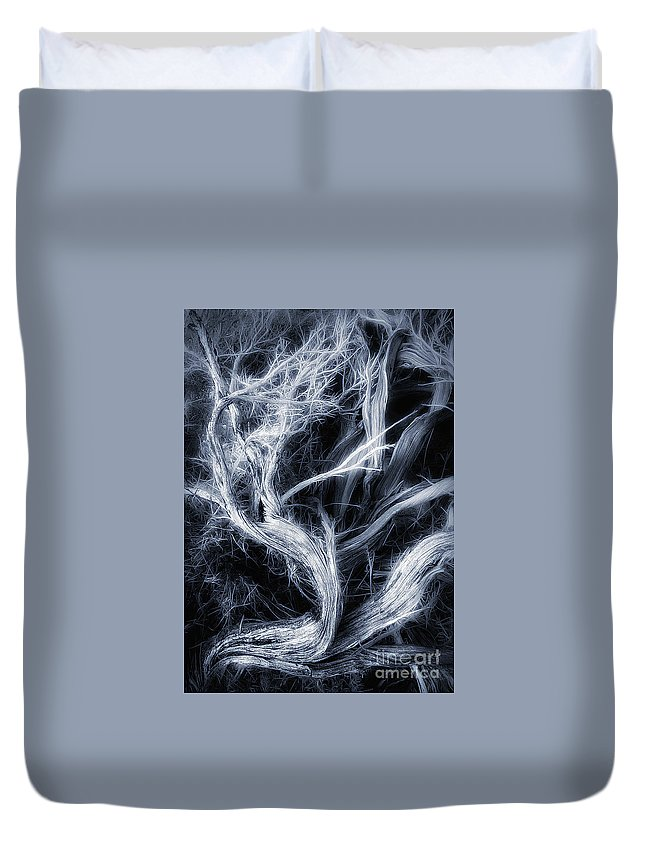 Branch Duvet Cover featuring the photograph Desert Limbs by Mike Nellums