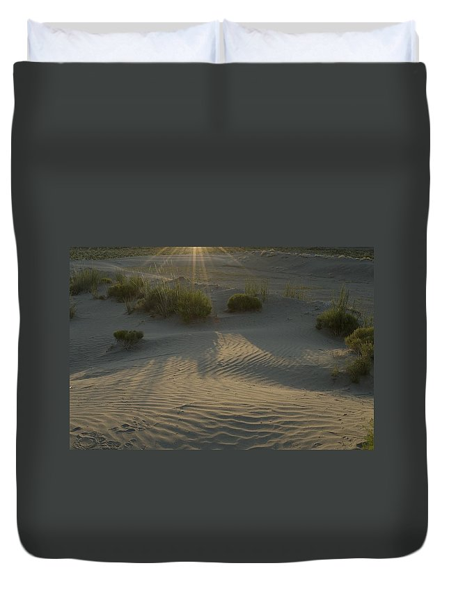 Sand Duvet Cover featuring the photograph Desert Rays by Sara Stevenson