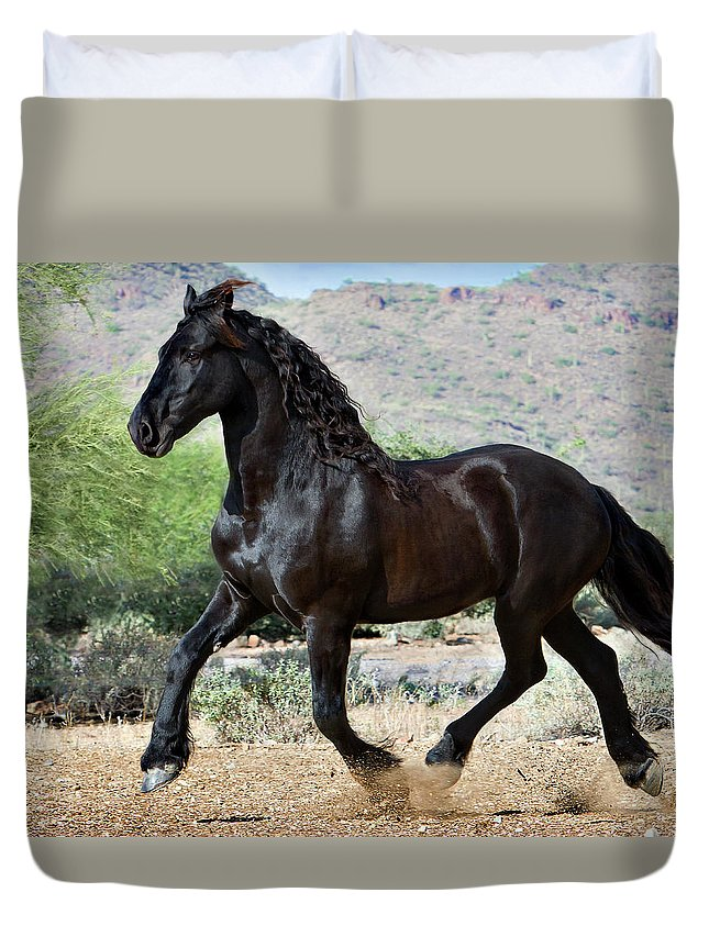Horse Duvet Cover featuring the photograph Desert Wind by Jean Hildebrant