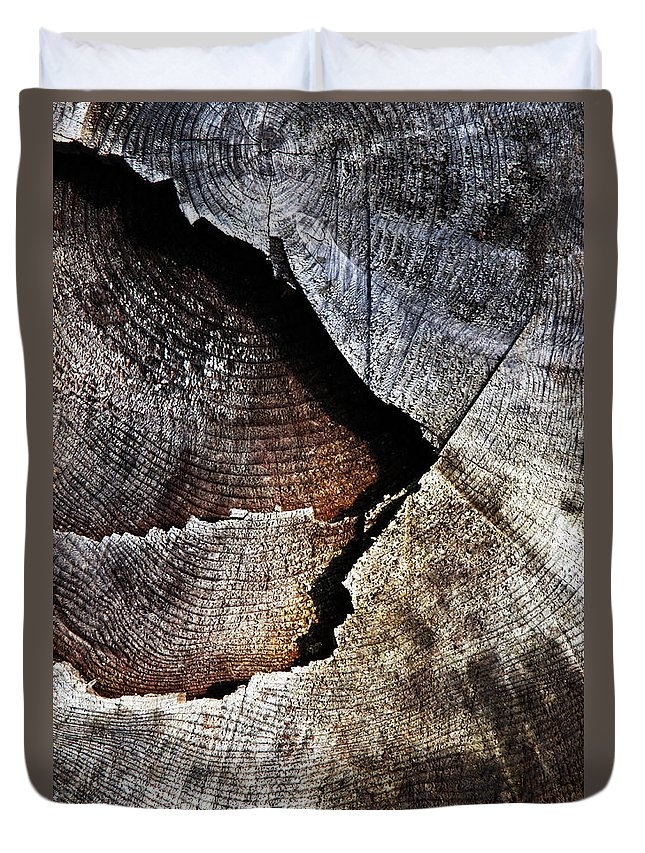 Blue Duvet Cover featuring the photograph Detail Old Sawn Stump by Jozef Jankola