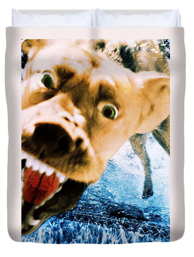 Dog Duvet Cover featuring the photograph Devil Dog Underwater by Jill Reger