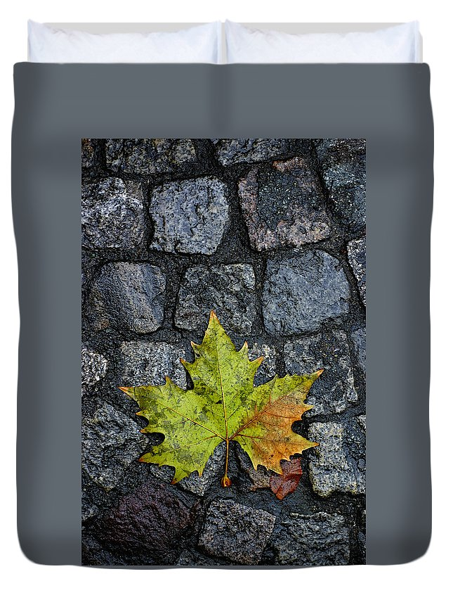 Nature Duvet Cover featuring the photograph Deville by Skip Hunt