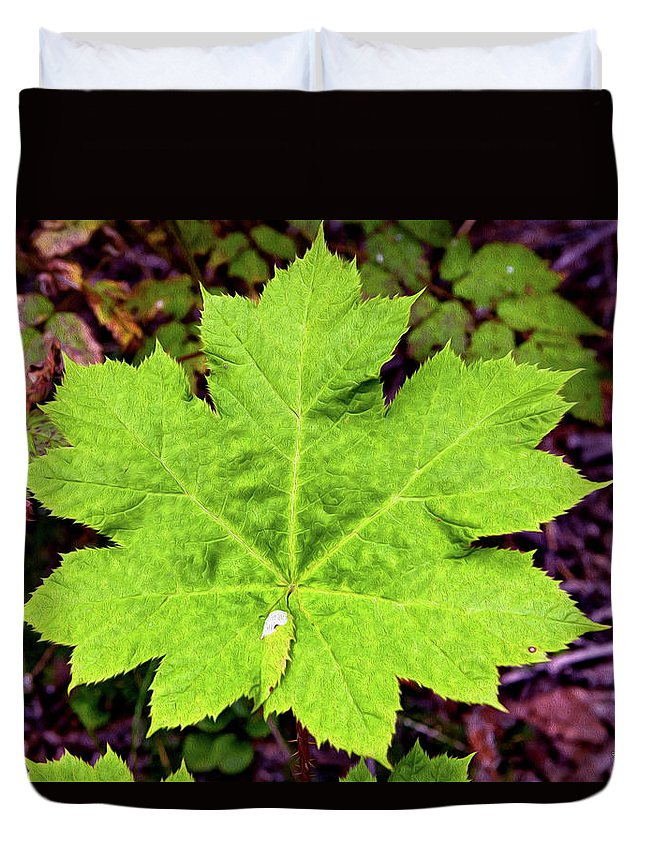 Nature Duvet Cover featuring the digital art Devil's Club Leaf by Christopher Eng-Wong