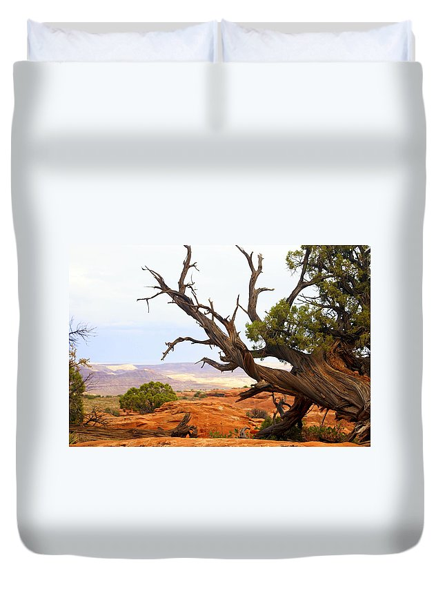 Southwest Art Duvet Cover featuring the photograph Devils Garden 2 by Marty Koch