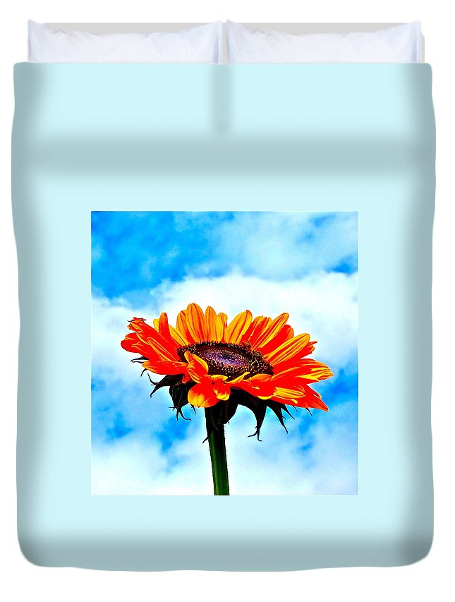 Photograph Of Sunflower With Blue Sky Duvet Cover featuring the photograph Devotion by Gwyn Newcombe