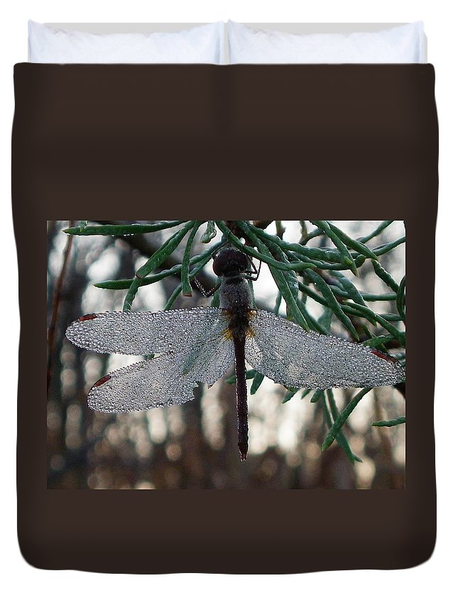 Dragonfly Duvet Cover featuring the photograph Dew Beaded Wings by Peggy King