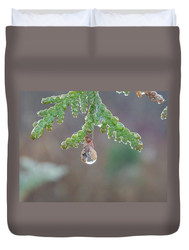 Dew Drop Duvet Cover featuring the photograph Dew Drop by Peggy King