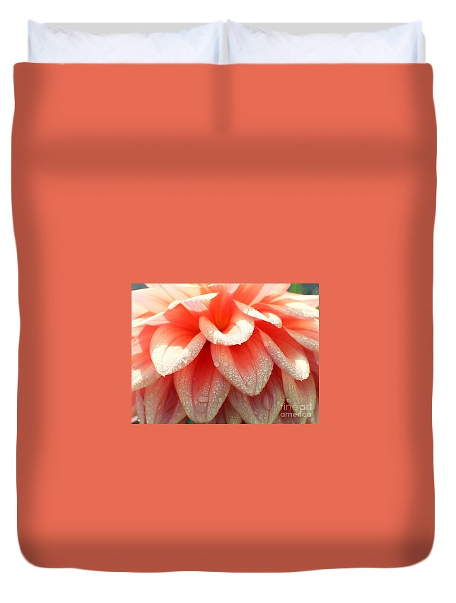 Dahlias Duvet Cover featuring the photograph Dew -drops On The Dahlia 2 by Jane Powell