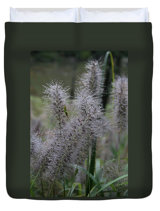 Dew Duvet Cover featuring the photograph Dew Drops - Plant by Lynn Michelle