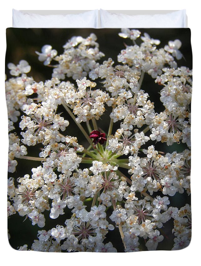 Wildflowers Duvet Cover featuring the photograph Dew On Queen Annes Lace by Lynn Quinn