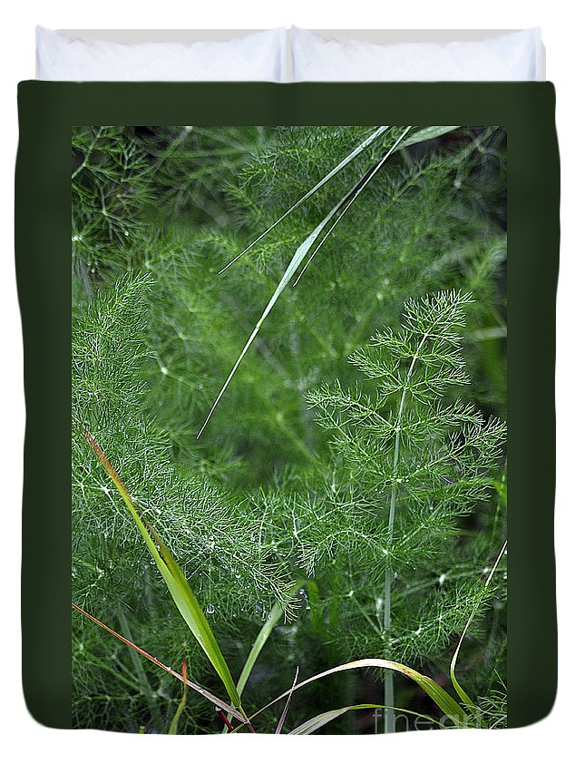 Clay Duvet Cover featuring the photograph Dew On The Ferns by Clayton Bruster