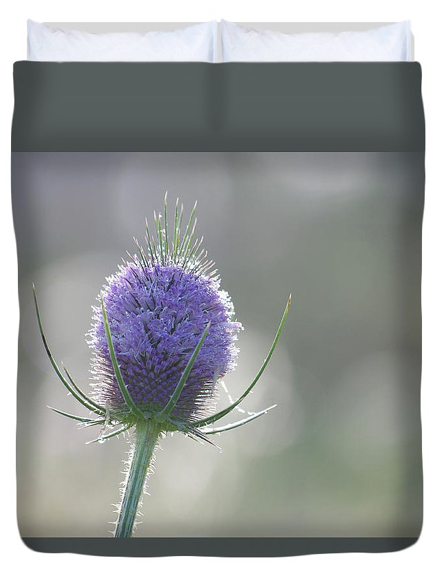 Thistle Duvet Cover featuring the photograph Dew On Thistle 1 by Merrill Miller