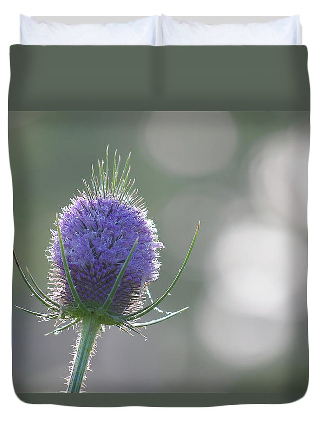 Thistle Duvet Cover featuring the photograph Dew On Thistle 2 by Merrill Miller