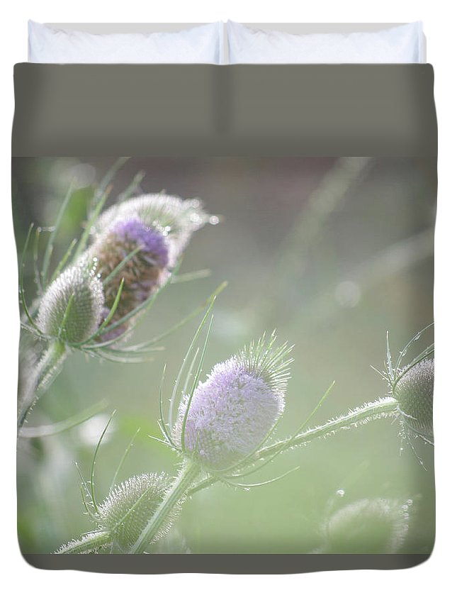 Thistle Duvet Cover featuring the photograph Dew On Thistles 1 by Merrill Miller