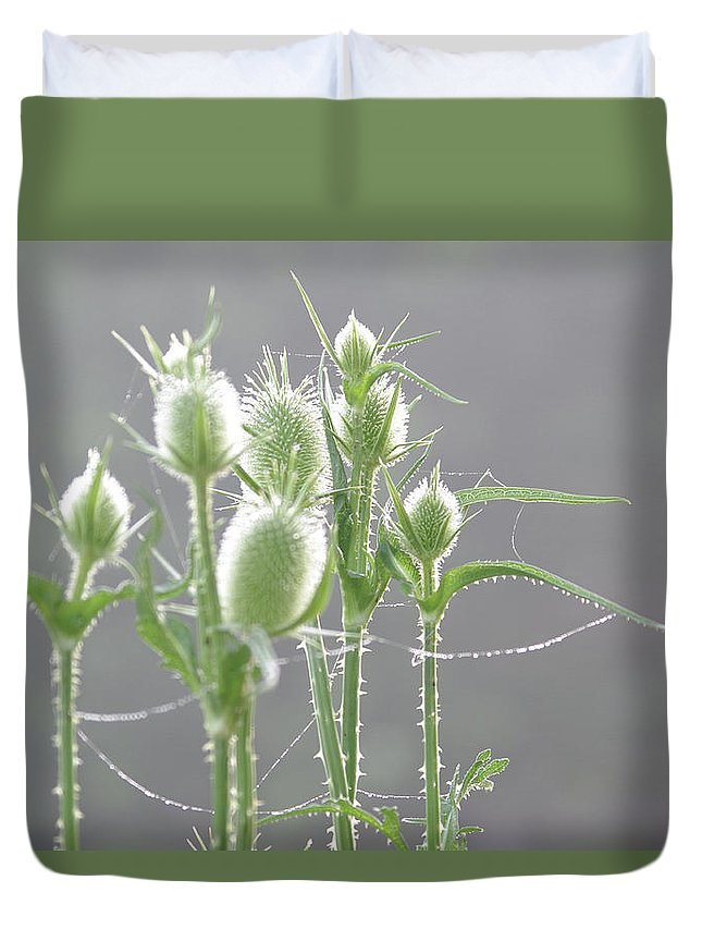 Thistle Duvet Cover featuring the photograph Dew On Thistles 3 by Merrill Miller