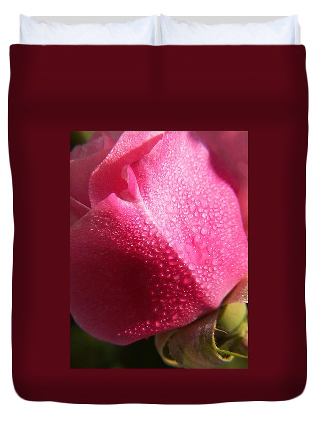 Pink Roses Duvet Cover featuring the photograph Dewy Rose by Amy Fose