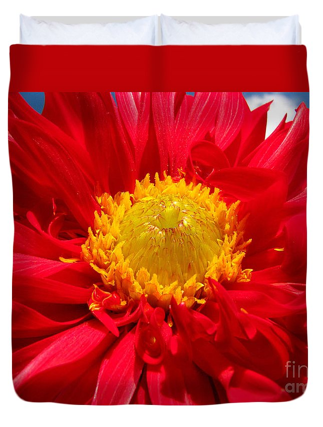 Dhalia Duvet Cover featuring the photograph Dhalia by Amanda Barcon
