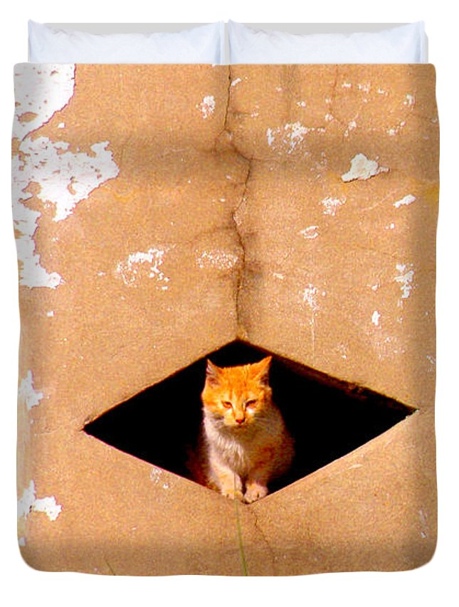 Cat Duvet Cover featuring the photograph Diamond Kitty by Albert Stewart