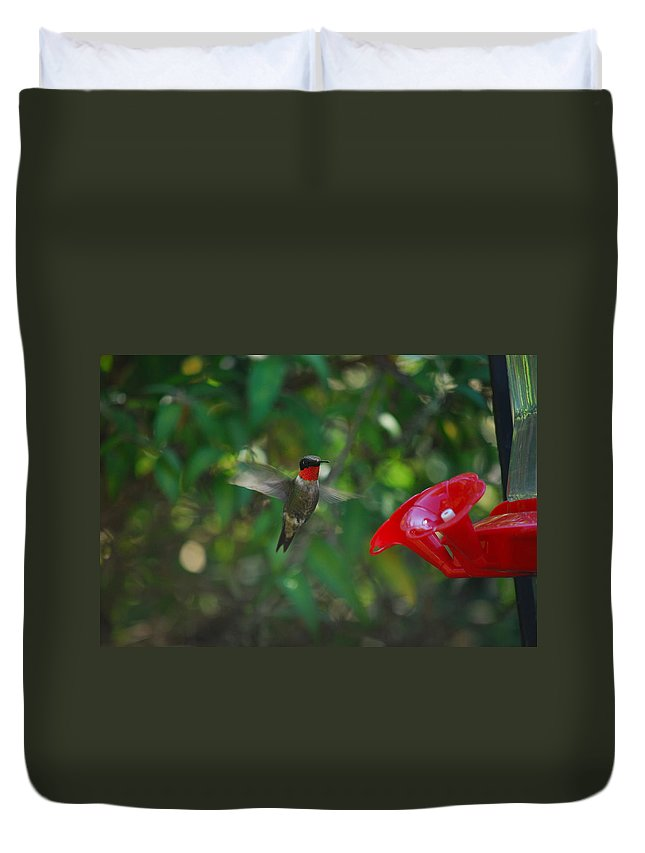 Hummingbird Duvet Cover featuring the photograph Dinner Time by Lori Tambakis