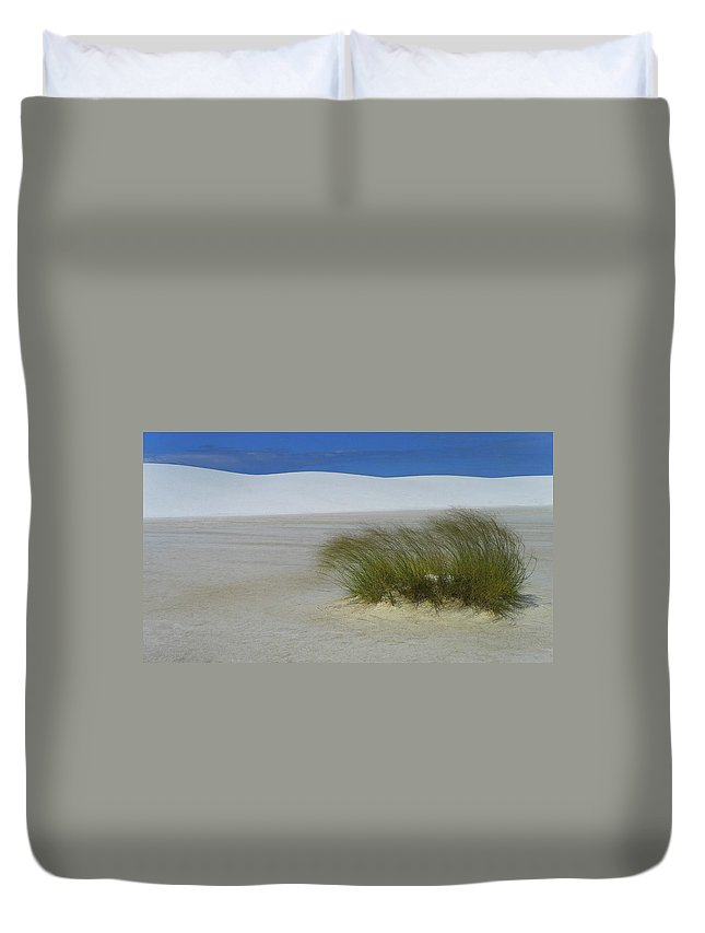Dither Duvet Cover featuring the photograph Dither by Skip Hunt
