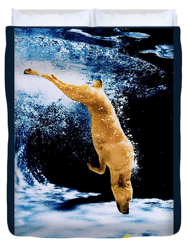 Pet Duvet Cover featuring the photograph Diving Dog Underwater by Jill Reger