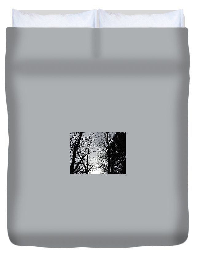 Duvet Cover featuring the photograph Divinity Light by Dan Hassett