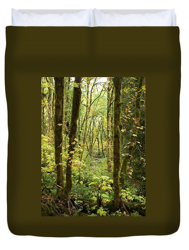 Woods Duvet Cover featuring the photograph Dixie by Sara Stevenson