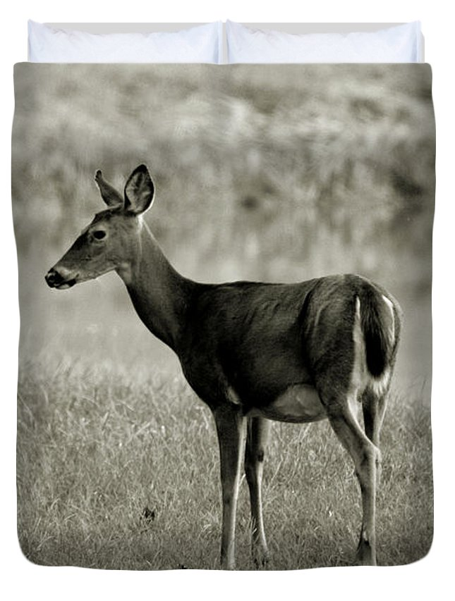 Doe Duvet Cover featuring the photograph Doe By The Waters Edge by Scott D Van Osdol