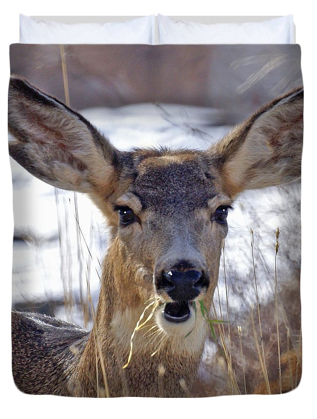 Doe Duvet Cover featuring the photograph Doe by Heather Coen