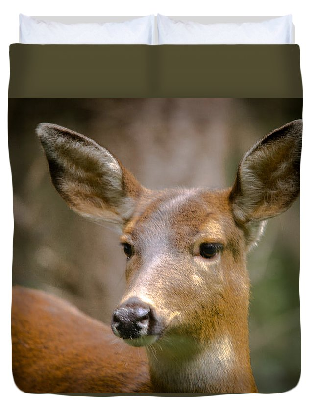 Doe Duvet Cover featuring the photograph Doe With A Blaze by Penny Miller