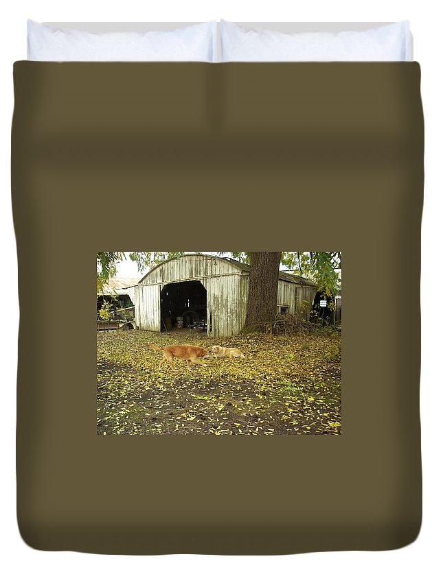 Dog Duvet Cover featuring the photograph Dog Day's by Sara Stevenson