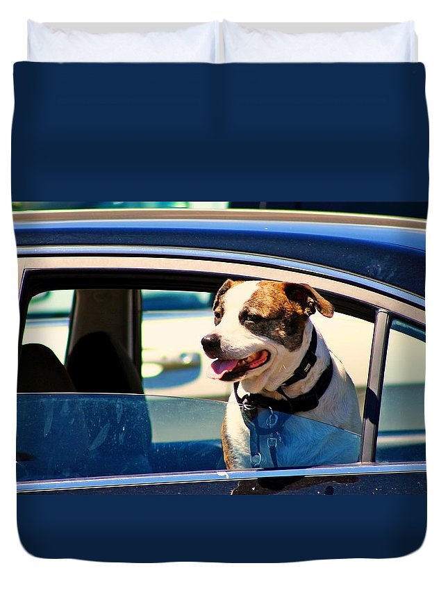 Dogs Duvet Cover featuring the photograph Dog In Car by Karl Rose