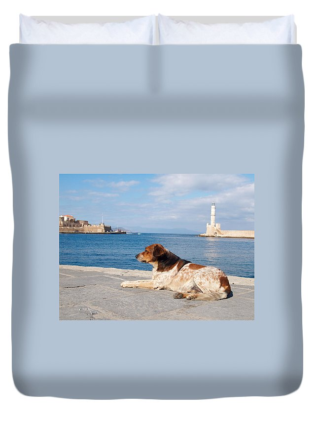 Architecture Duvet Cover featuring the photograph Dog Watch by Jouko Lehto