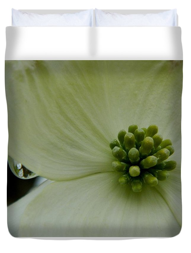 Dogwood Duvet Cover featuring the photograph Dogwood Bloom - Closeup by Arlane Crump