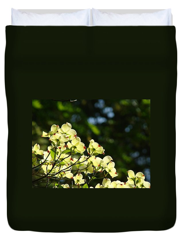 Dogwood Duvet Cover featuring the photograph Dogwood Flowers White Dogwood Tree Flowers Art Prints Cards Baslee Troutman by Baslee Troutman
