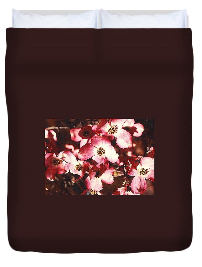 Dogwood Duvet Cover featuring the photograph Dogwood Harmony by Nancy Mueller