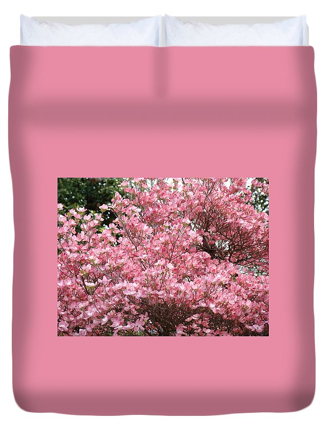 Dogwood Duvet Cover featuring the photograph Dogwood Tree Flowers Art Prints Canvas Pink Dogwood by Baslee Troutman