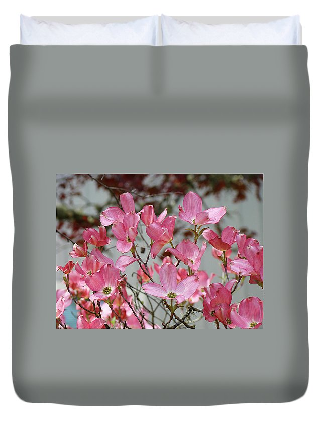 Dogwood Duvet Cover featuring the photograph Dogwood Trees Flower Blossoms Art Baslee Troutman by Baslee Troutman