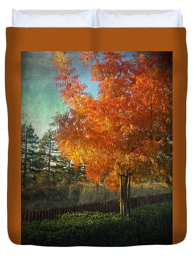 Trees Duvet Cover featuring the photograph Don't Ever Let Go by Laurie Search