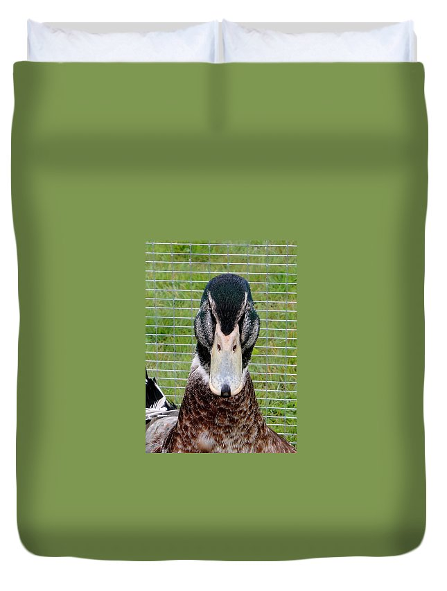 Animals Duvet Cover featuring the photograph Dont Mess With The Duck by Susan Baker