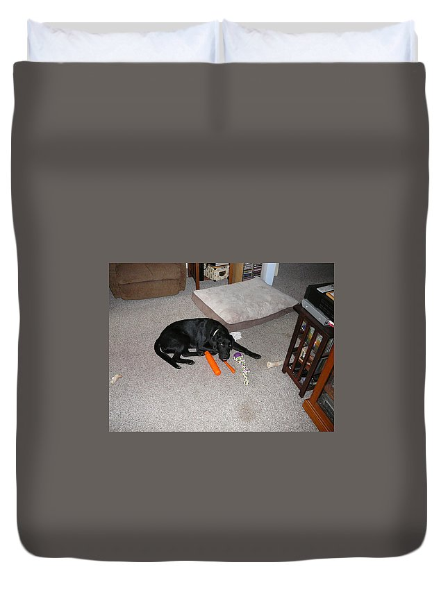 Toys Dog Lab Treats Duvet Cover featuring the photograph This Carrot Is Delicious  by Joe Smiga