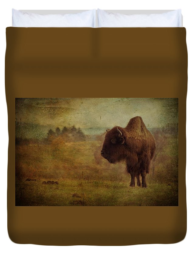 Bison Duvet Cover featuring the photograph Doo Doo Valley by Trish Tritz