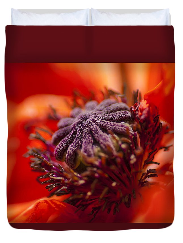 Flowers Duvet Cover featuring the photograph Douze by Greg Collins